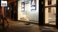 Zijn er daklozen in Borgerhout?
