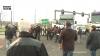 Vorige woensdag werden in Borgerhout 43 foorkramers opgepakt
